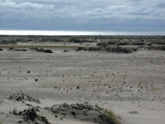 Белое море фото