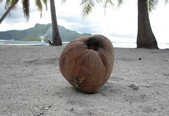 foto-ostrova-bora-bora-1