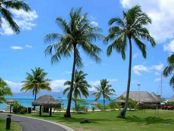 Фото острова Бора-Бора