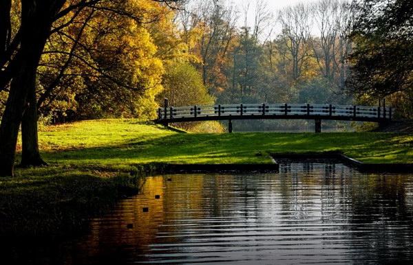 Парк Вондела (Амстердам)